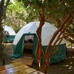 Zdjęcia hotelu: Eco Domos Lago Verde, Esquel
