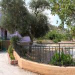 Vassilis Studios, Anaxos