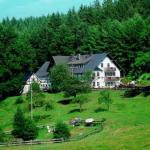 Hotel Pictures: Landhotel Cafe Gut Ahe, Kirchhundem