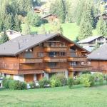 Hotel Pictures: Monte Fiori, Morgins
