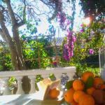 Guest House Magnolia,  Ulcinj