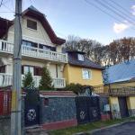 Vila Zenovia,  Braşov