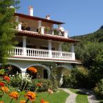 Alexandros Apartments & Studios,  Agios Gordios