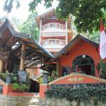 Hotel Orangutan, Bukit Lawang