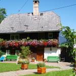 Foto Hotel: Bio Bauernhof Maurerwolferl, Irdning