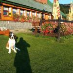 Hotel Pictures: Chata Moravanka, Horní Malá Úpa