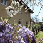 Chianti Promotion Hotel Calzaiolo,  San Casciano in Val di Pesa