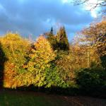 Hotel Pictures: East Lodge (St.Georges), Needwood