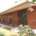 Jkm Vacation Rental Accommodations, Kajansi