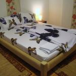 Guest House Andrei,  Cluj-Napoca