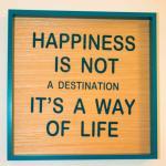 Happiness rooms,  Verona