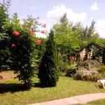 Vigyi Apartman Gyula, Gyula