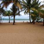 Beach Front Apartment Rio Mar Puerto Rico, Rio Grande