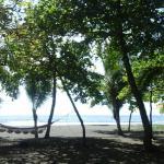 Hotel Pictures: Dos Palmas Beach Front, Matapalo