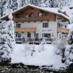 Photos de l'hôtel: Appart Gitti, Gerlos