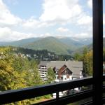 Relaxing Balcony, Sinaia