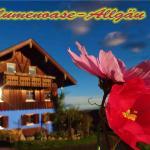 Hotel Pictures: Blumenoase Allgäu, Schwanden