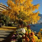 Hotel Pictures: Royal Plaza Montreux & Spa, Montreux