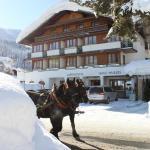Hotelbilleder: Alpenhotel Wurzer, Filzmoos