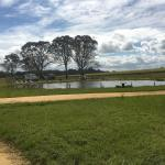 Fotos do Hotel: Coonawarra Bush Holiday Park, Glenroy