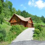 Hotel Pictures: Holiday home Pavacer I, Dlouhý