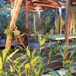 Hotel Pictures: Vila de Alter Pousada Boutique Amazônia, Alter do Chao