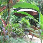 La Posada Jungle Bungalows,  Manuel Antonio