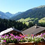 Hanslerfeld,  Alpbach