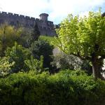 Pelletier du Claux, Carcassonne