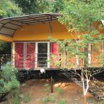 Caravan Serai, Jambughoda