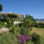Hotel Pictures: Villa Blanche, Orcino