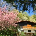 Hotel Pictures: Chalet Dabo, Dabo