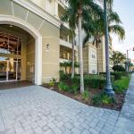 Olive - Vista,  Orlando