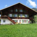 Apartment Chalet Pletschen,  Gütsch