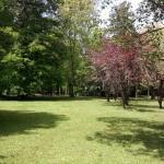 Hotellbilder: Cabañas Delta Tigre Le Parc, Tigre