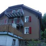 Hotel Pictures: Obermatt, Engelberg