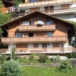 Hotel Pictures: Juwel, Adelboden