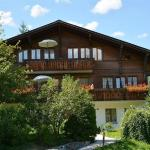 Hotel Pictures: Abendrot, Saanen