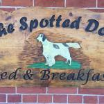 Hotel Pictures: Spotted Dog B and B, Madoc