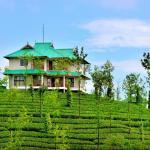 Green hill estate, Vagamon