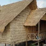 Mangrove Lodge,  Kampot