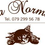 Hotel Pictures: Da Norma, Sobrio