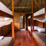 Hotel Pictures: Green Forest Ecolodge, Puerto Montúfar