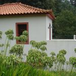 Holiday Home Casa Oliveira,  Camacha