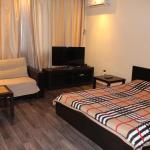 Apartment on Selezneva Street, Krasnodar