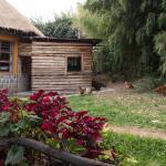 Peakspot Kinigi Camp,  Gihora
