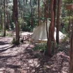 Fotos del hotel: Elebanah Luxury Camping, Avoca Beach