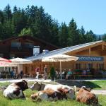 Hotel Pictures: Alpengasthof Götschenalm, Bischofswiesen