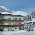 Hotellikuvia: Pension Jägerhof, Mallnitz