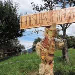 Hotel Pictures: Hoislbauerngut, Bad Hofgastein